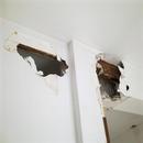 foto1788 Demoliciones-Catas en zonas de jácenas estructurales